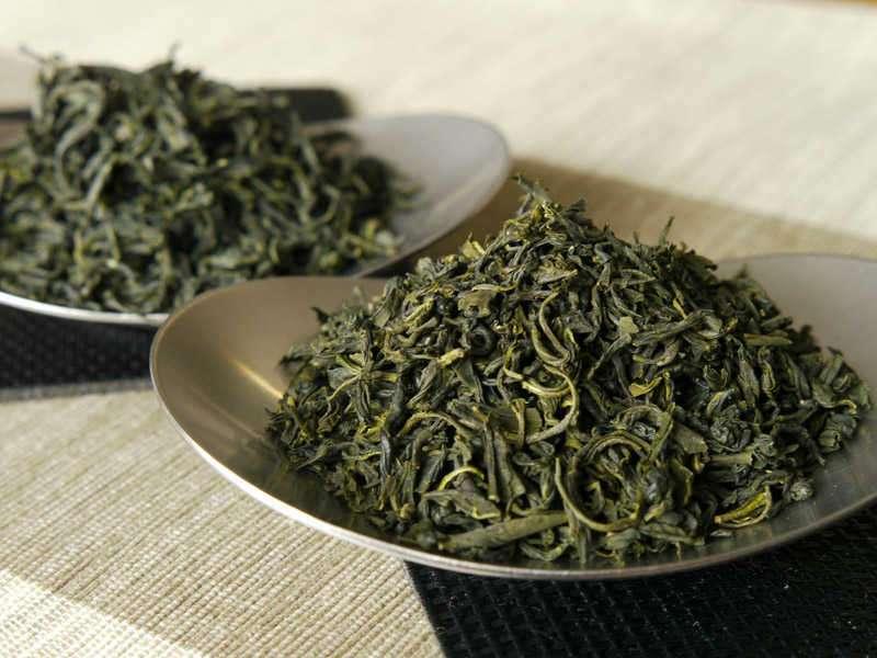 Cómo elegir el té para la kombucha