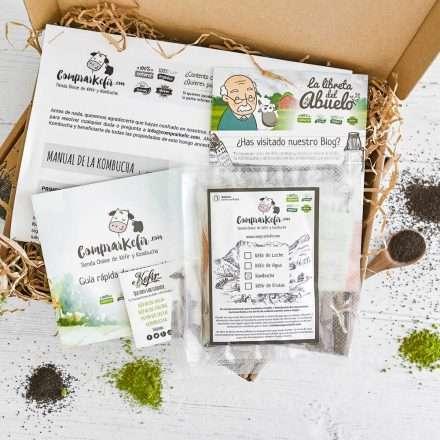Comprar scoby / hongo de Kombucha Online