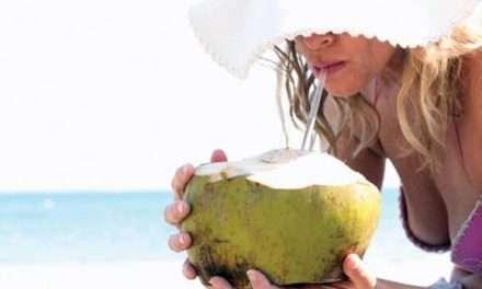 Cómo Hacer Kéfir de Leche de Coco Orgánico