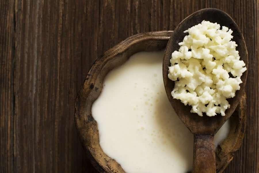 Conseguir kéfir de leche artesano