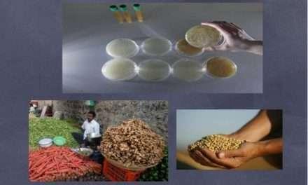 Quinoa, kéfir, semillas de lino… Alimentos de moda