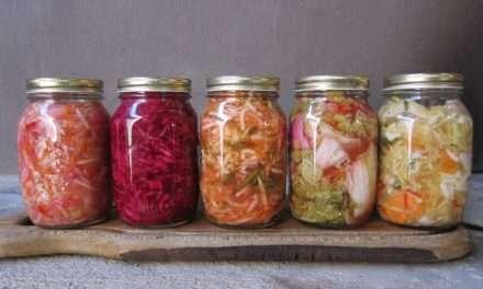 Los fermentados están de moda, ¡pon un alimento vivo en tu plato!