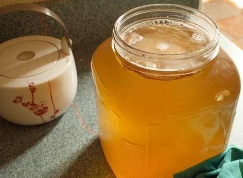 Seis beneficios y propiedades del té de Kombucha