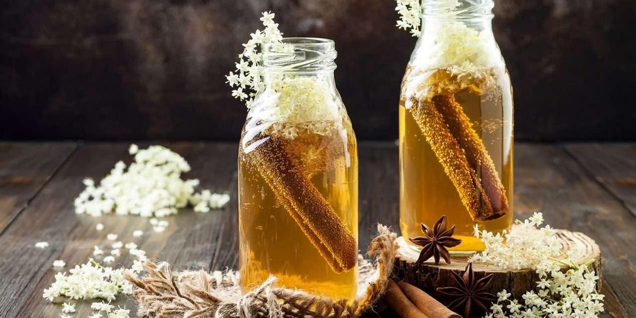 La kombucha, el hongo 'trendy' que se bebe