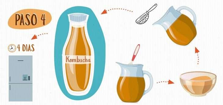 Kombucha, una infusión con propiedades probióticas