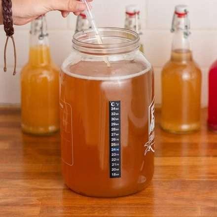 Termómetro adhesivo para fermentados y botellas de cultivo