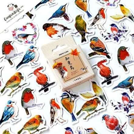 40 pegatinas (stickers) de aves, pájaros de colores