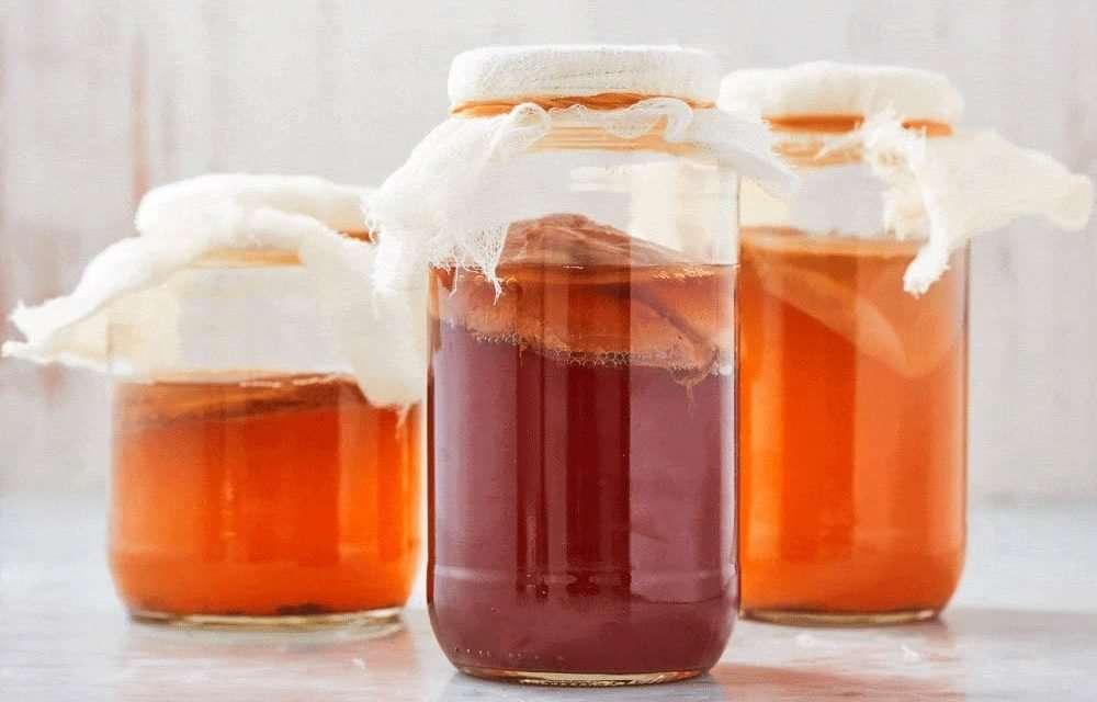 5 recetas para preparar té de kombucha de sabores