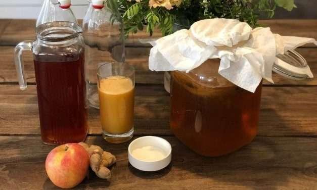 Receta de Kombucha de manzana y jengibre