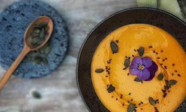 Salsa tibia de queso vegano de calabaza con Kombucha y Jengibre